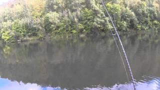 Рибалка в Тульській області