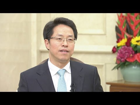 'One Country, Two Systems' proven to be a success in HKSAR: senior Chinese official