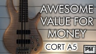 i want one awesome value for money 5 string bass cort a5 demo