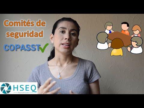 Comités de Seguridad y Salud en el Trabajo (COPASST)