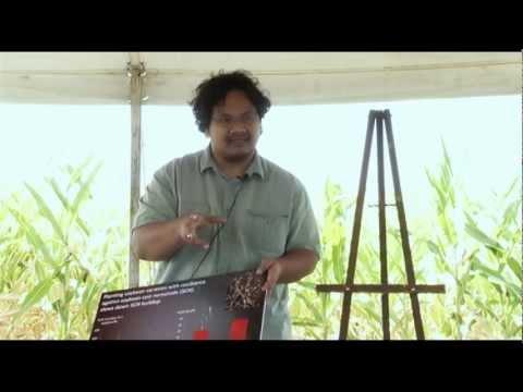 2012 IPM Field School: SCN & Corn Nematodes