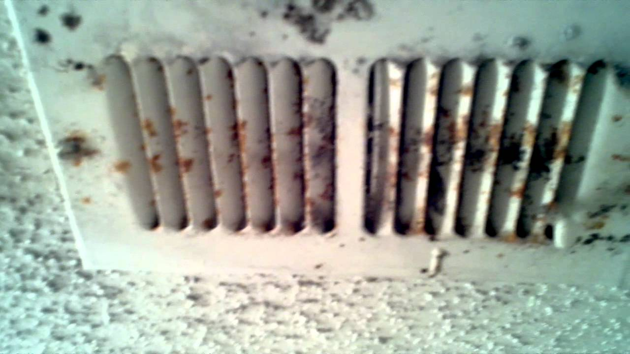 Mold In Ac Vents >> Black mold vent first view - YouTube