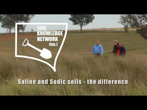 Saline and sodic soils - the difference