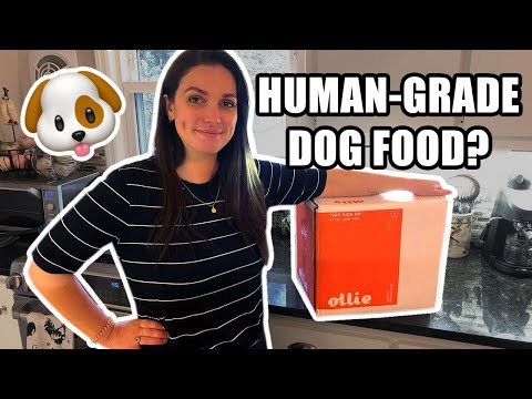 🐶Ollie Review: The Best Single-Serve Dog Food Delivery Box?