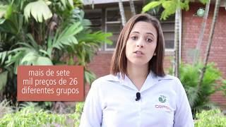 INSUMOS PECUÁRIOS: Cepea lança página de Insumos Pecuários