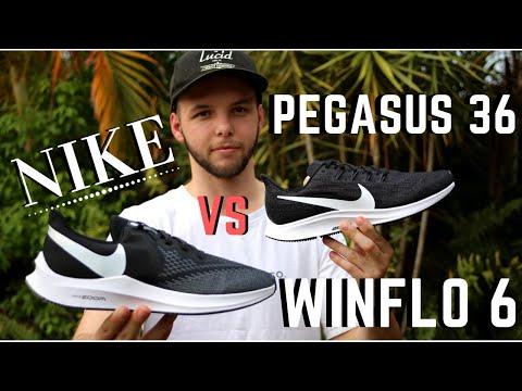 diferencia Instalación Entrelazamiento  Nike Pegasus 36 vs Nike Winflo 6 | Best Budget Nike! - YouTube