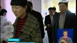 Визит китайской делегации на Кавминводы завершился