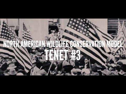 North American Wildlife Conservation Model - Tenet #3