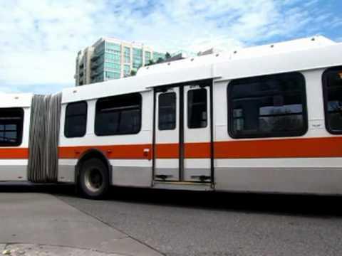 Mississauga, Brampton, & York Region Transit Bus Systems