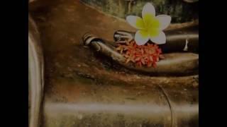 Nhạc Thiền Tịnh Tâm - Còn và mất - nhạc thiền phật giáo hay nhất