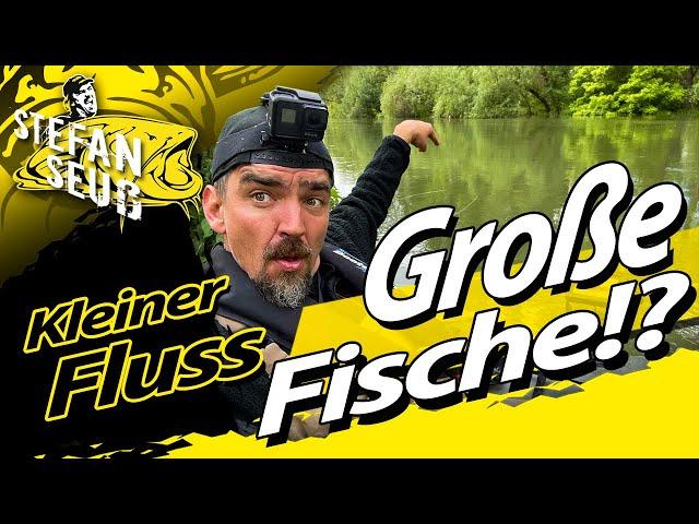 Große FISCHE am kleinen FLUSS?! | Damit hätten wir nicht gerechnet | Freestyle Angeln mit Wurm