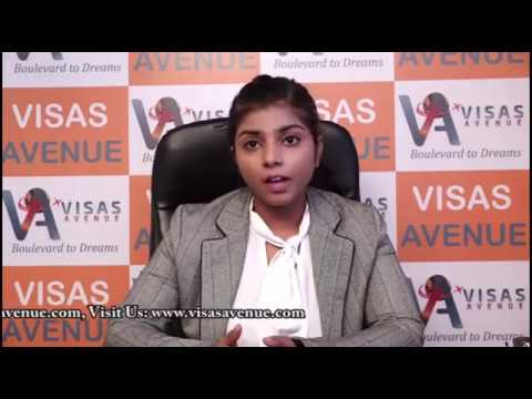 Visas Avenue Employee Reviews | Immigration Consulting Expert
