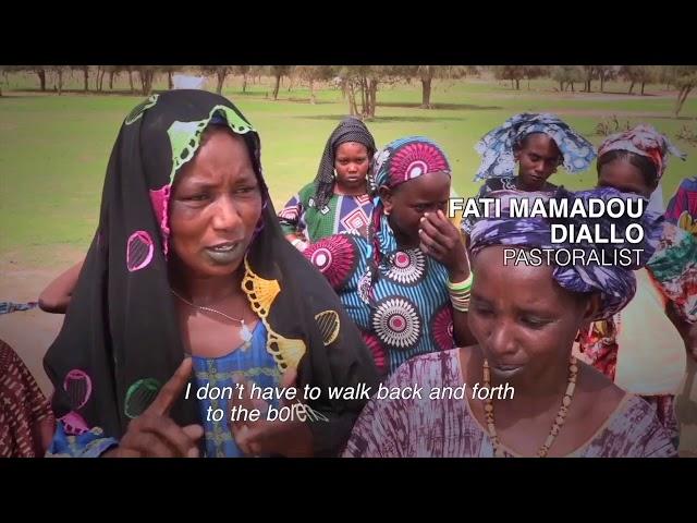 IFAD Senegal