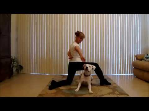 Dog Tricks With Remi and Michele