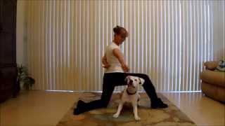 Dog Tricks With Remi & Michele
