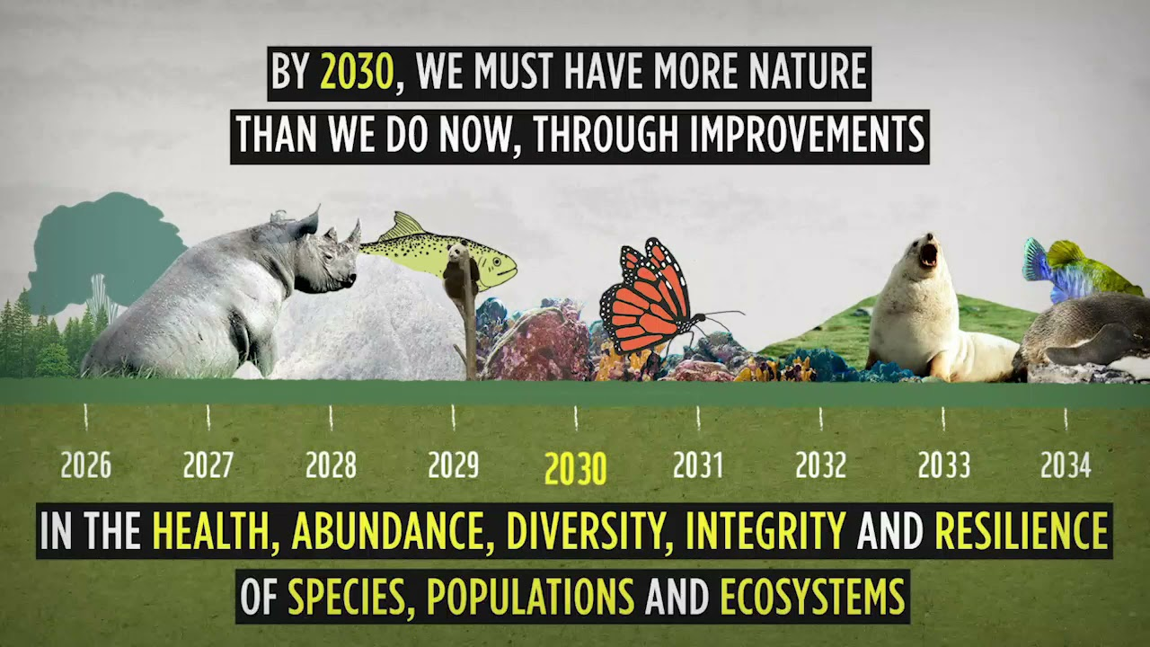 Nature Positive by 2030: the race is on!