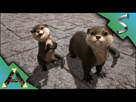 Question for Otter owners? - General Discussion - ARK