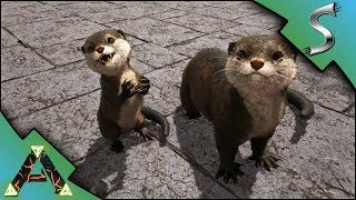 OTTER TAMING! WHERE TO FIND OTTERS ON RAGNAROK! OTTER BREEDING! - Ark: RAGNAROK [DLC Gameplay E53]