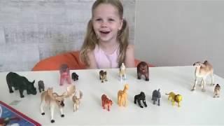 English lesson - wild animals! Урок английского для детей. Дикие животные.