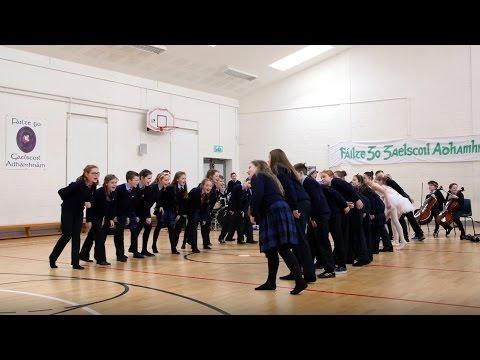 Gaelscoil Adhamhnáin, Leitir Ceanainn, Co. Dhún na nGall - Primary Finalist 2017