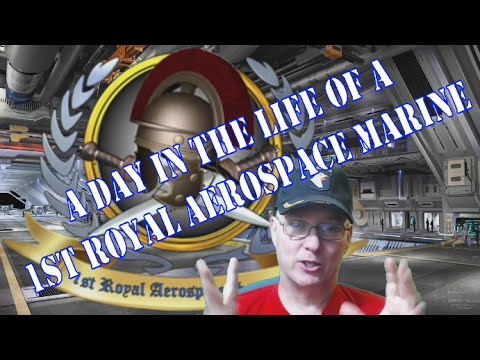 A Day in the Life of a Star Citizen [1RAS] Marine Org