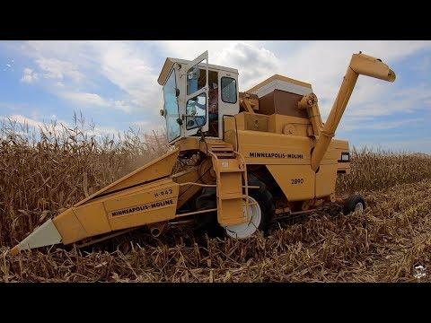 Harvesting Corn At The 2019 Half Century Of Progress Show