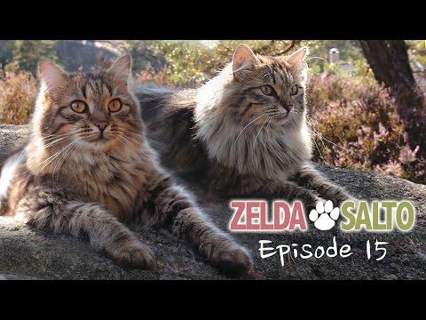 Best friends - Zelda&Salto