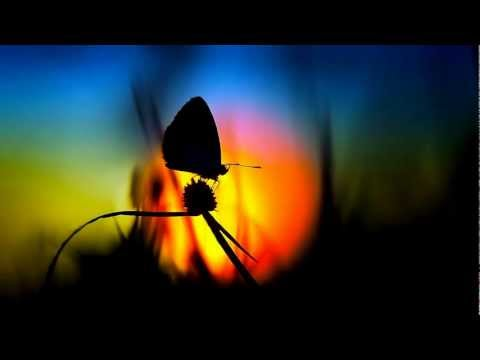 Клип Oliver Smith - Butterfly Effect - Club Mix