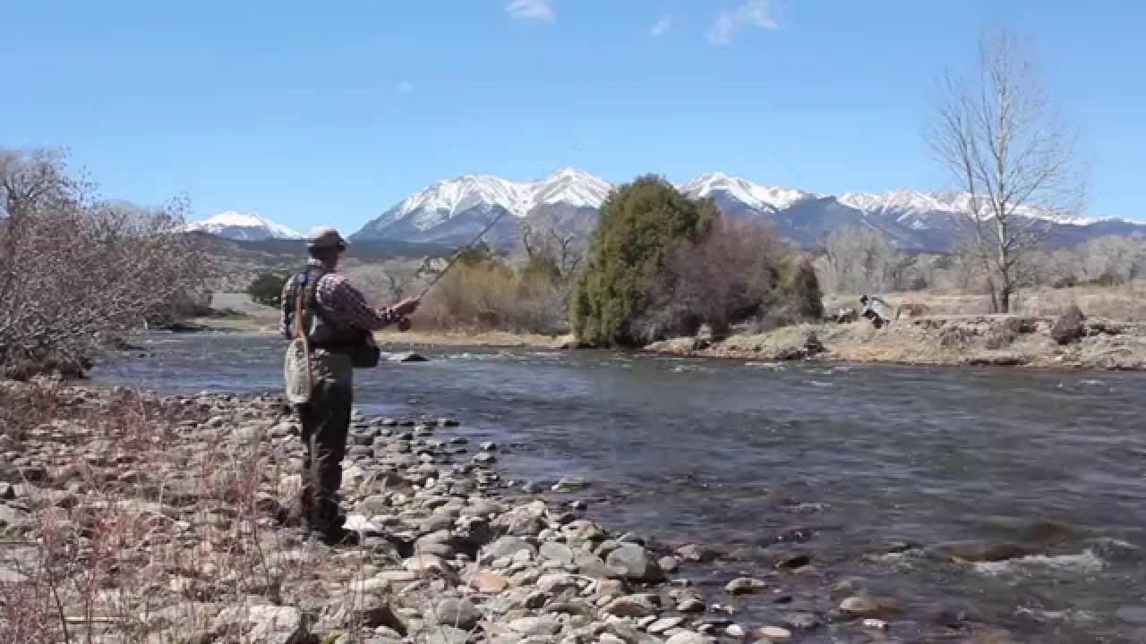 Fly fishing the arkansas river near buena vista salida for Fly fishing arkansas