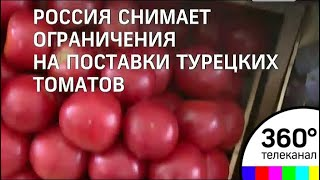 Турецкие томаты возвращаются в Россию