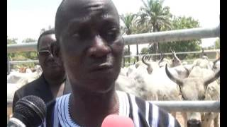 TOGO : inauguration du marché à bétail d'Agbassa