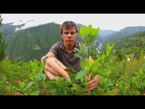 Рискованное путешествие в мировую столицу серебра, город Потоси. Боливия - 2 серия, 7 сезон
