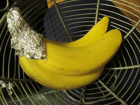 It Came From Pinterest - Making Bananas Last Longer