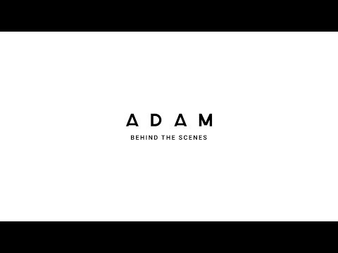 ADAM: Behind the s