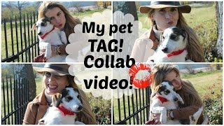 MY PET TAG! ♥ MEET MY LOVELY LANCIA♥  Collab With JustaCountryGirl