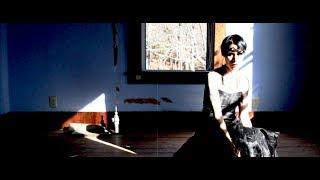 dust bowl faeries - dark ride (the gothic limo remix)