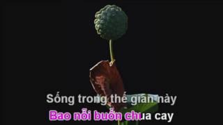 karaoke con quy y tam bao