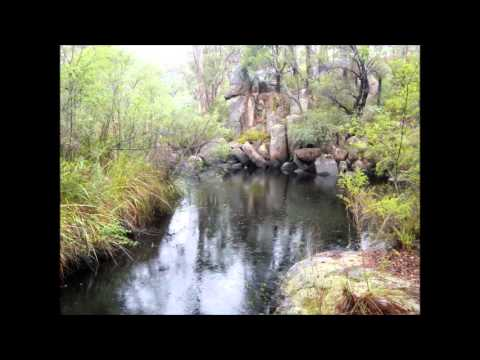 South-west Australian Rare Freshwater Fishes And Their Habitat