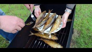 Копчение рыбы в домашних условиях. Самодельная коптильня для рыбы, рецепт!(Копчение рыбы в домашних условиях. Самодельная коптильня для рыбы, рецепт!- в этом видео я расскажу вам как..., 2015-09-14T12:12:30.000Z)