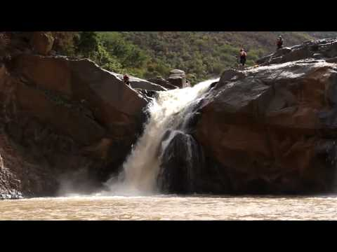 Fluid Detox Video