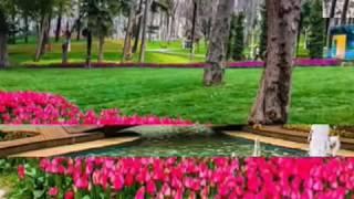 Gulhane Park Turkey
