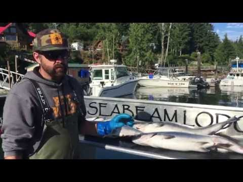 EatWild - How to Clean a Salmon