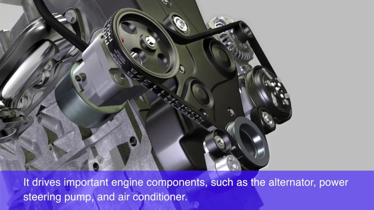 What Is a Serpentine Belt? | Palladino Honda