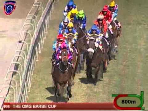 Polar Bound Ridden By Fausto Durso Wins The 2014 Barbe Cup