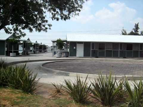 Guadalajara Country Club - Stabling Area