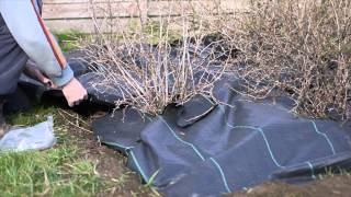 Laying Weed Control Fabric