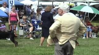 Doberman Pinscher Club Of Canada National Show 2011.wmv