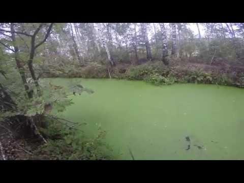 Как поймать щуку осенью в сентябре, видео rybachil.ru