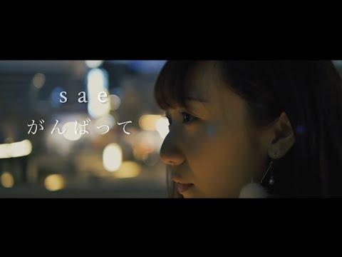 【MV】がんばって / sae  MusicVideo.