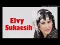 ELVY SUKAESIH - RANA DAN RANI (BAGOL_COLLECTION)